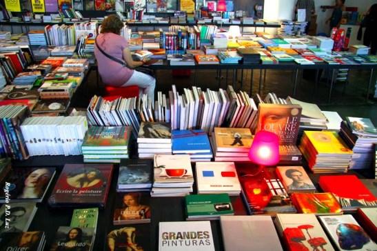 Mergulhada no meio de livros artísticos para livre leitura no local ou para venda
