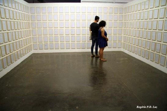 Bienal Arte S.Paulo 2012 (13)