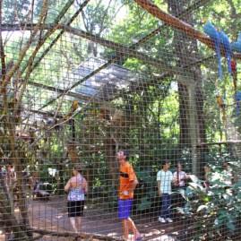 Parque das Avesl (18)