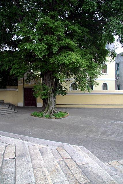 O portão externo que liga a Igreja ao Seminário