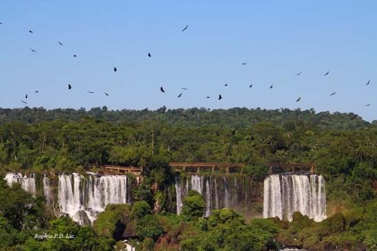 Brasil Cataratas Foz Iguaçu Dez2012 (08)