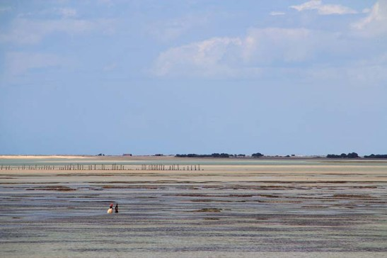 Uma praia rasa com areia fina e dura.  Em maré baixa, com cuidado, dá para andar longe nas águas com alto teor de salinidade.
