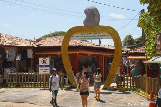 Na entrada para o parque do maior cajueiro possui variado comércio de roupas, artesanato e muito cajú para venda.