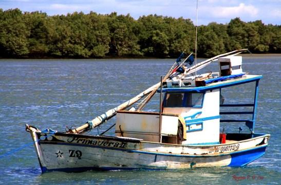 Barco em Macau (24)