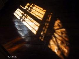 Casa da Imagem S.Paulo (26)