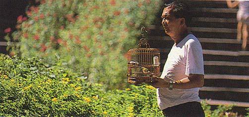 Imagem do livreto 50 Maneiras de Conhecer Macau