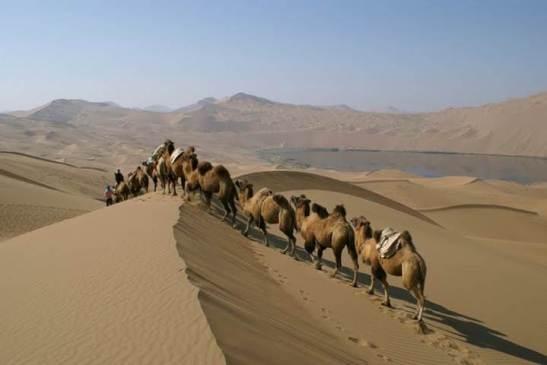 China Deserto de Badain Jaran (116 pps)