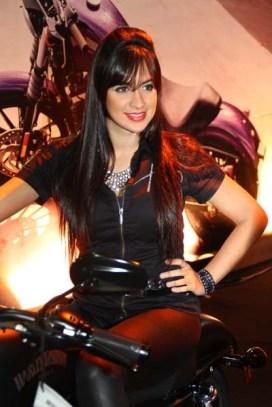 Salao 2 Rodas.Harley Davidson (01.1)