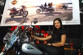 Salao 2 Rodas.Harley Davidson (010.1)