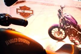 Salao 2 Rodas.Harley Davidson (013)