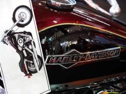 Salao 2 Rodas.Harley Davidson (028)