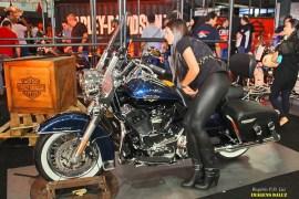 Salao 2 Rodas.Harley Davidson (08)