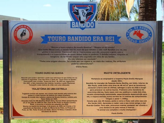 Memorial Touro Bandido (03)