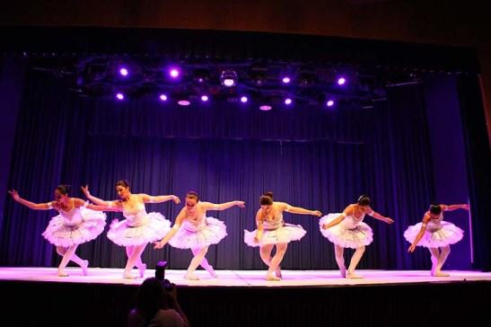Palmeiras Ballet e Jazz (00.000)