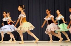 Palmeiras Ballet e Jazz (00.002)