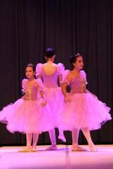Palmeiras Ballet e Jazz (00.004)