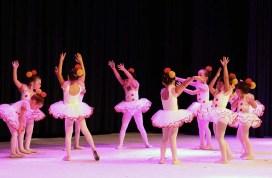 Palmeiras Ballet e Jazz (00.011)