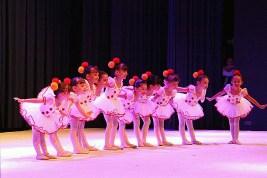 Palmeiras Ballet e Jazz (00.012)