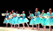 Palmeiras Ballet e Jazz (06)