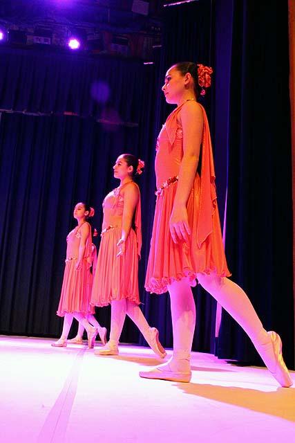 Palmeiras Ballet e Jazz (220)