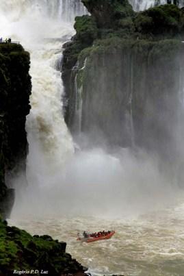 Cataratas Foz Iguacu Macuco safari (13)