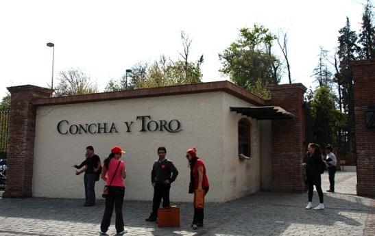 Chile Vinicola Concha Y Toro (01)