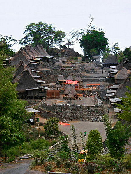 Imagem de Wikimedia Commons - Flores Bena traditional village.jpg