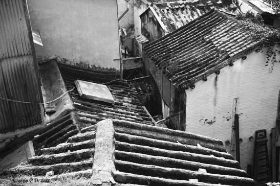 TELADO QUI VÊLO (telhados velhinhos)