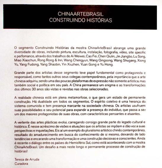 ChinaArteBrasil 2014 (132)
