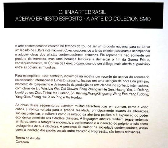 ChinaArteBrasil 2014 (160)