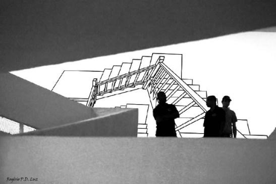Bienal 30 anos S. Paulo 2013 (01)