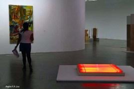 Bienal 30 anos S. Paulo 2013 (15)
