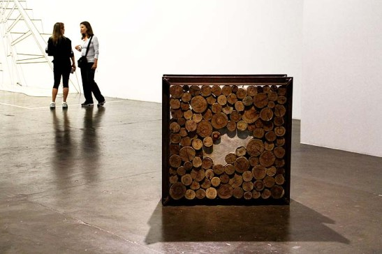 Bienal 30 anos S. Paulo 2013 (30)