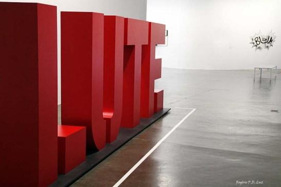 Bienal 30 anos S. Paulo 2013 (36)