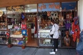 Chile Santiago bairro Bellavista (01)