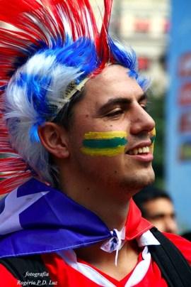 Copa Mundo Fan Fest ChilexHolanda (02)