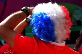 Copa Mundo Fan Fest ChilexHolanda (23)