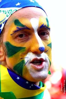 Copa Mundo Fan Fest ChilexHolanda (27)