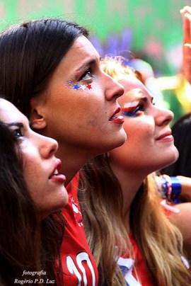 Copa Mundo Fan Fest ChilexHolanda (29)