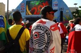 Copa Mundo Fan Fest ChilexHolanda (34)