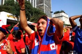 Copa Mundo Fan Fest ChilexHolanda (42)