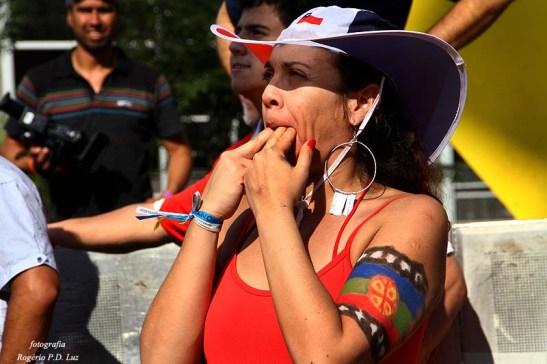 Copa Mundo Fan Fest ChilexHolanda (46)