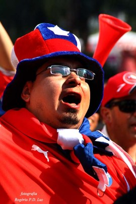 Copa Mundo Fan Fest ChilexHolanda (47)