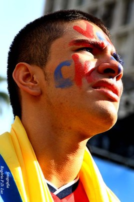 Copa Mundo Fan Fest ChilexHolanda (50)