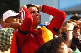 Copa Mundo Fan Fest ChilexHolanda (56)