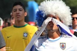 Copa Mundo Fan Fest UruguaixItalia (02)