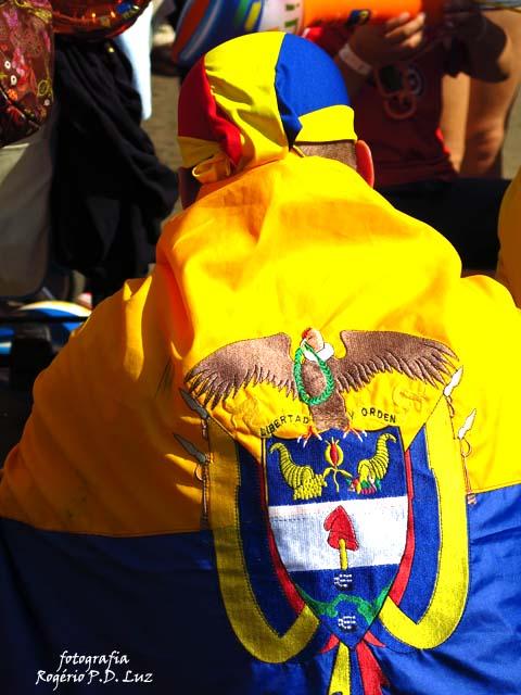 Copa Mundo Fan Fest ChilexHolanda (69)