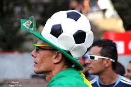 Copa Mundo Fifa Fan Fest ArgentinaxNigeria (62)