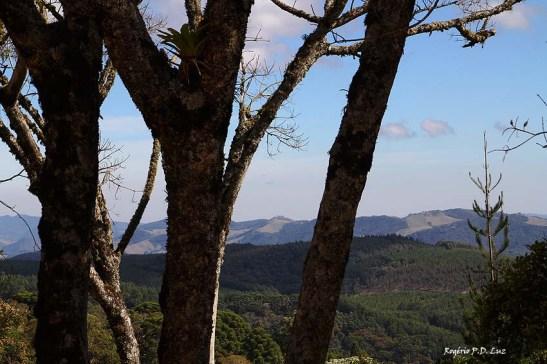 Monte Verde julho 2014 (16)