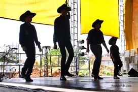 Revelando Sao Paulo 2014 folclore dança catira (14)